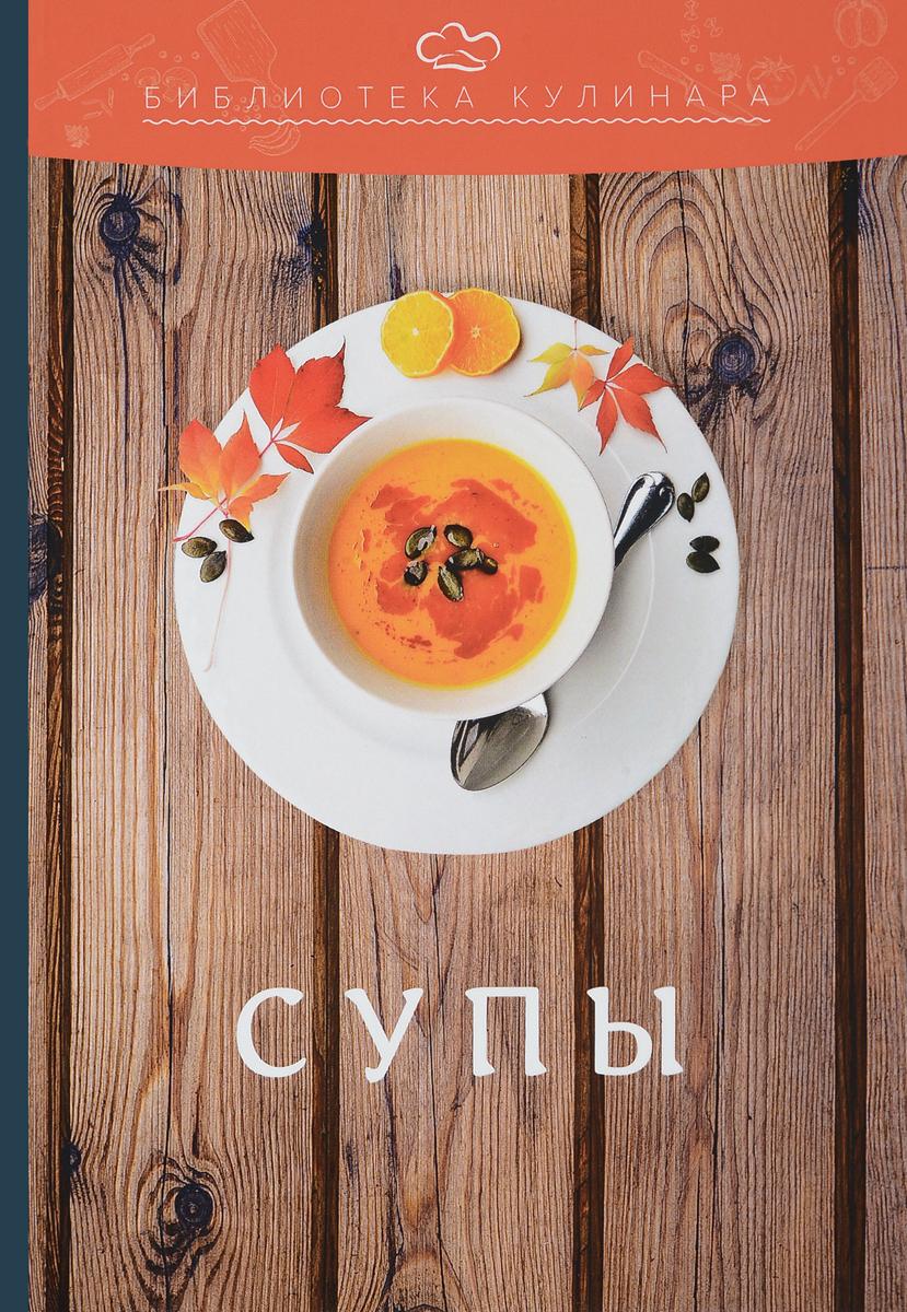А. С. Ратушный, С. С. Аминов, К. Н. Лобанов, О. В. Перфилова Супы