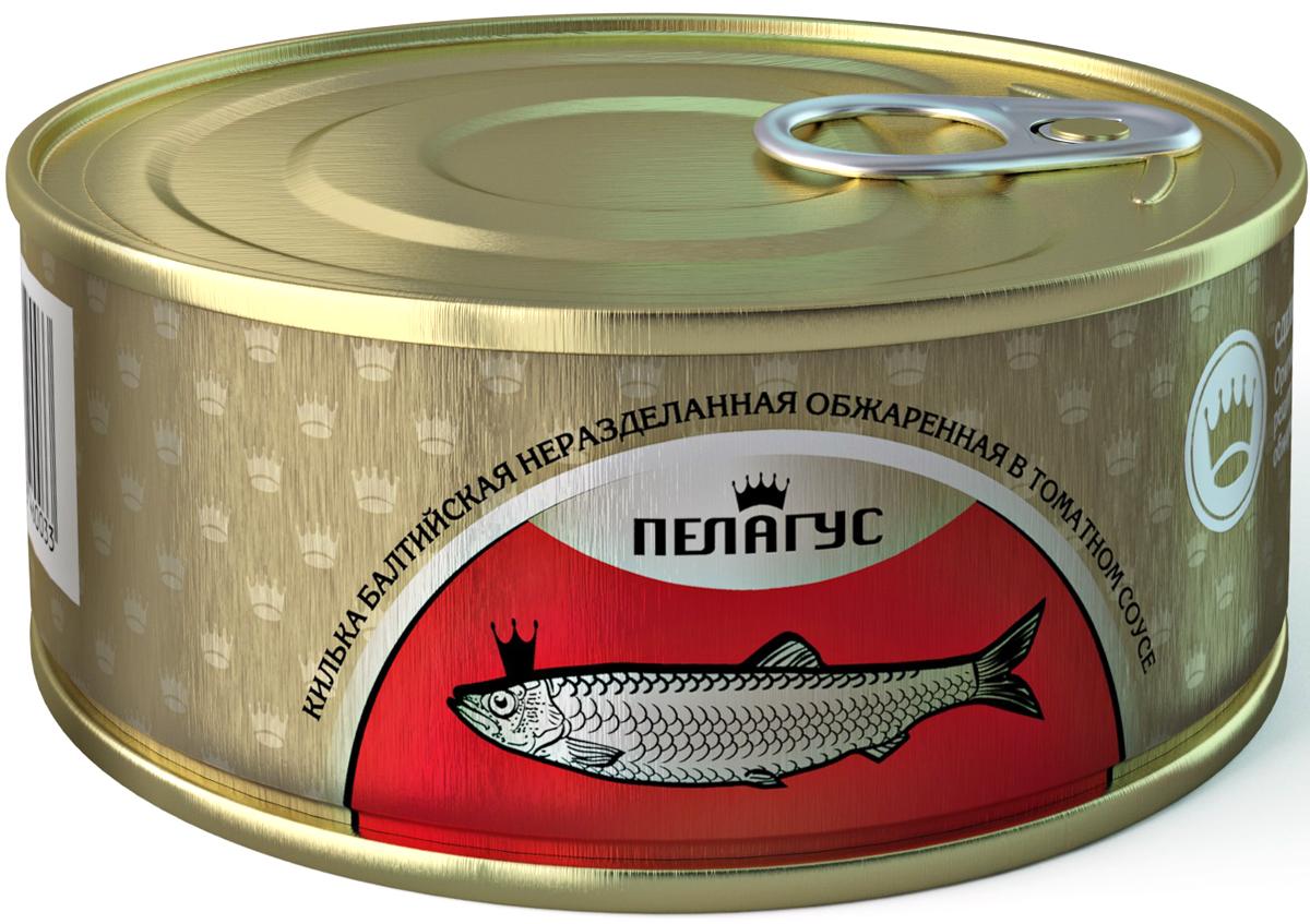 Пелагус килька неразделанная обжаренная в томатном соусе, 240 г4627098460033Килька Пелагус Балтийская неразделанная обжаренная в томатном соусе. Консервы стерилизованные. Продукт готов к употреблению.