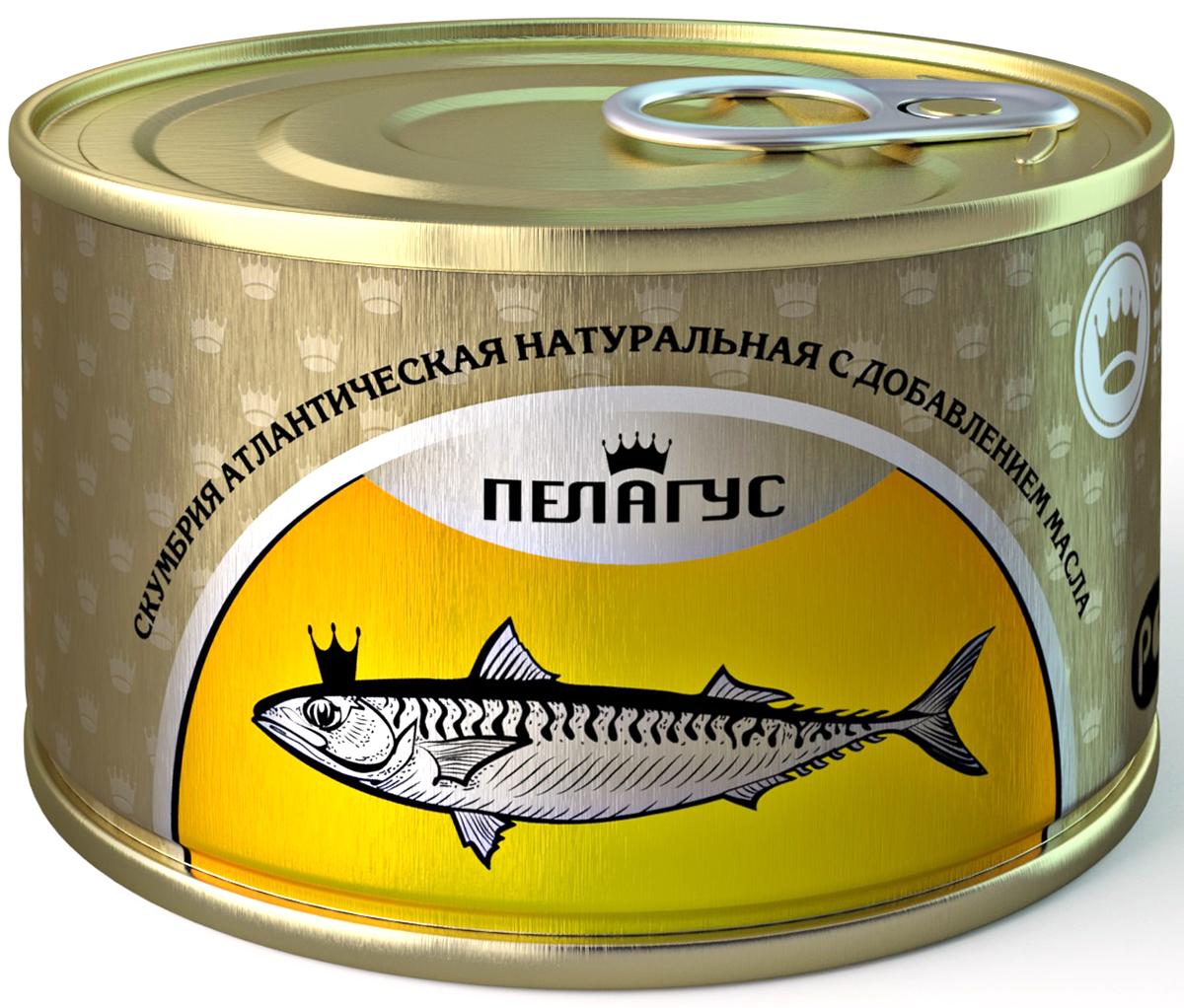 Пелагус скумбрия атлантическая натуральная с добавлением масла №5, 230 г4627098460064Именно северный вид скумбрии - более сочная рыба, т.к. сделана на берегу моря. Без консервантов.