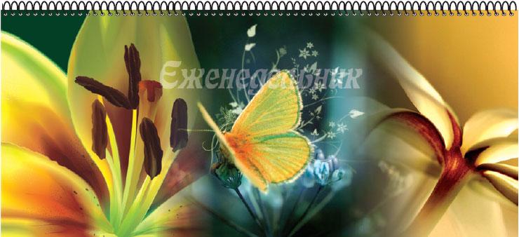 Планинг недатированный Бабочка 56 листов цвет желтый 11 x 29 см05-2201Недатированный планинг Бабочка на гребне - незаменимый помощник для планирования времени. Внутренний блок: белая офсетная бумага.
