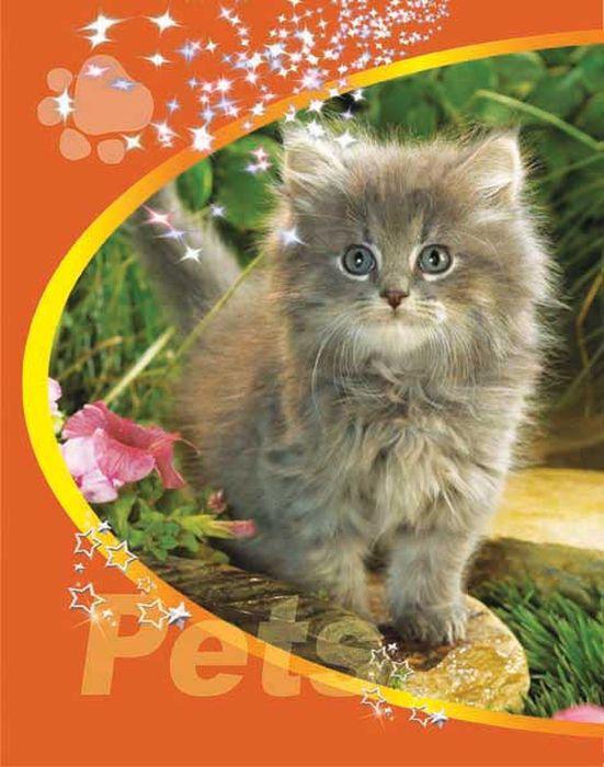 Тетрадь Pets Котенок 48 листов цвет оранжевый08-1203Тетрадь 48 л. кл. на гребне Pets Котёнок с ТП-2-5