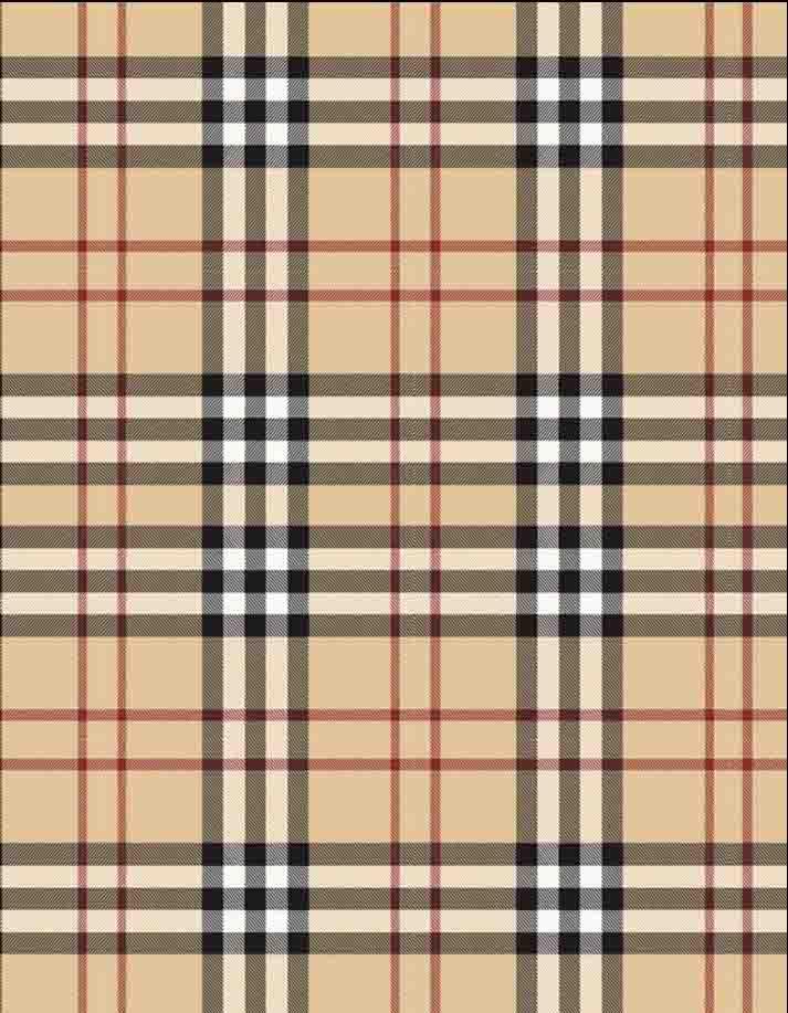 Тетрадь на пружине Шотландка 96 листов цвет бежевый формат А508-4401Тетрадь А5 96л.кл. на пружинеШотландкаТП5-96-3