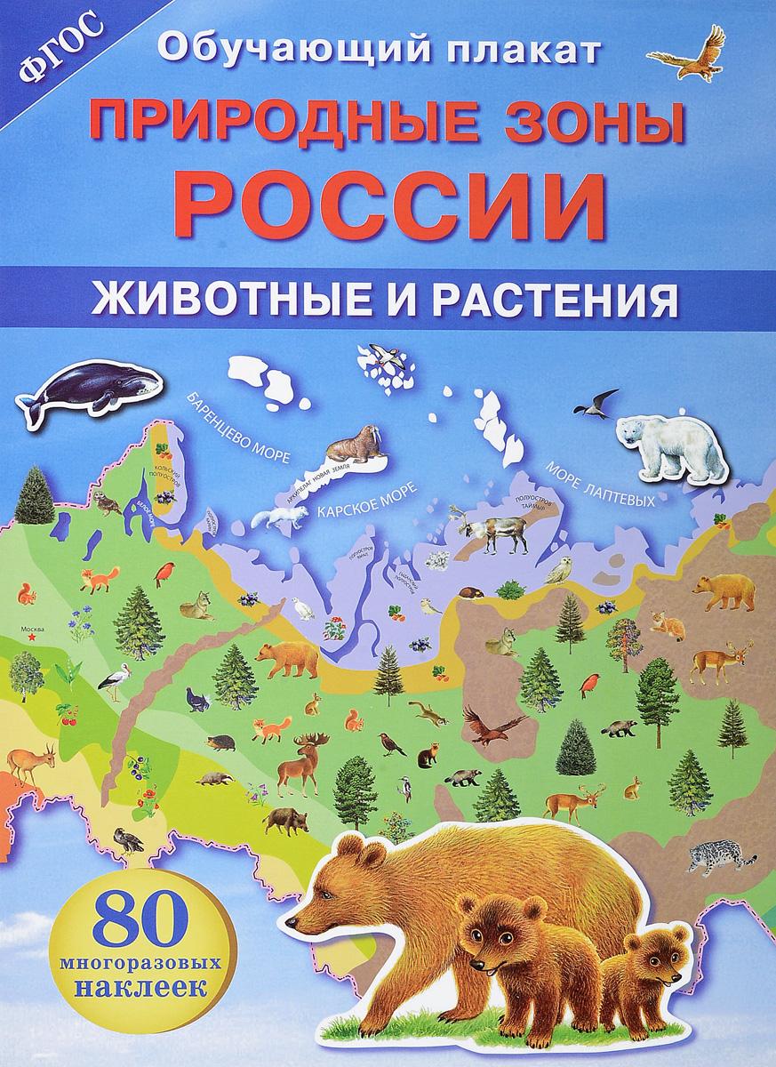 Природные зоны России. Животные и растения. Обучающий плакат (+ 80 наклеек)