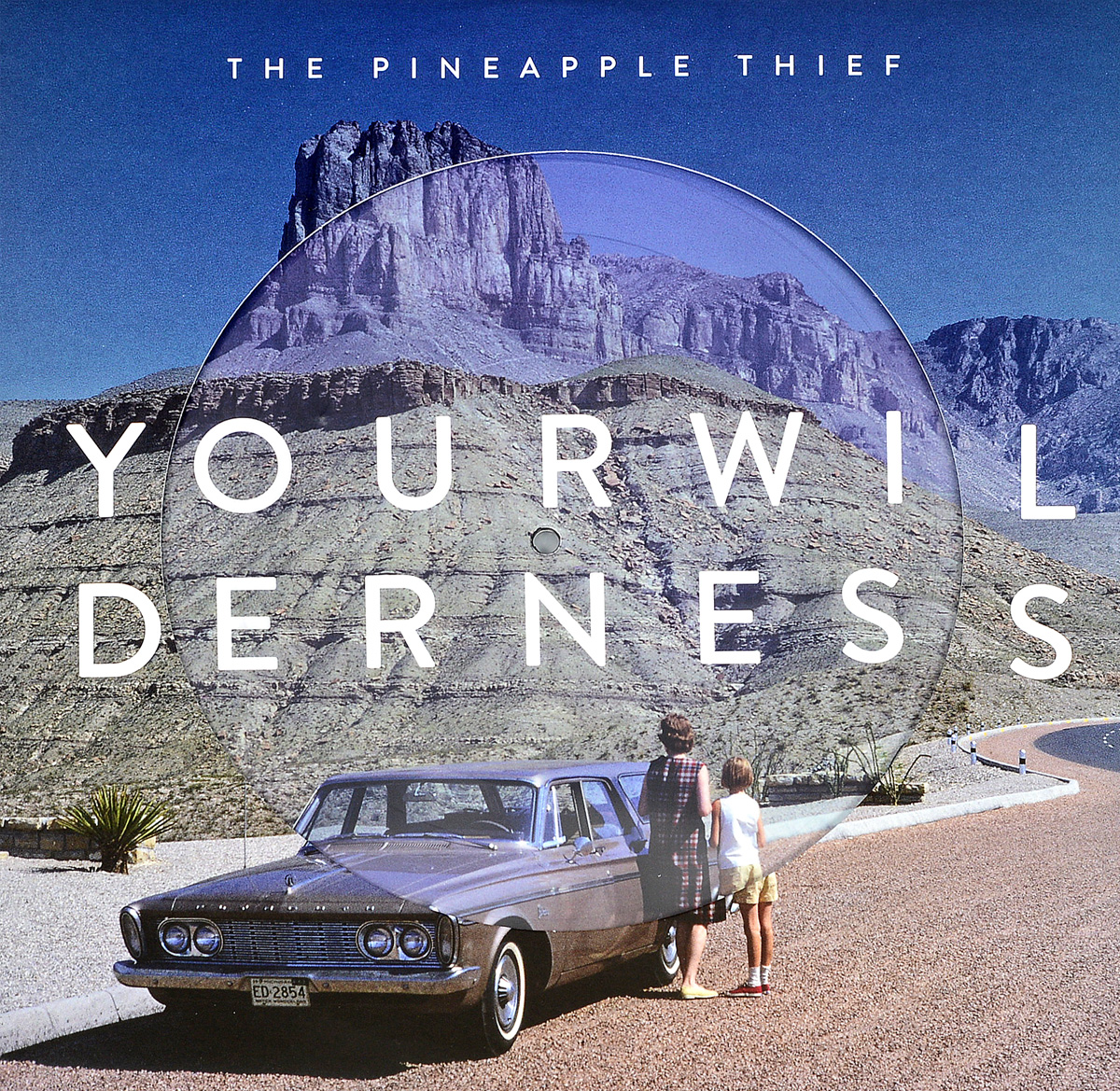 The Pineapple Thief THE PINEAPPLE THIEF. Your Wilderness (LP) the good thief