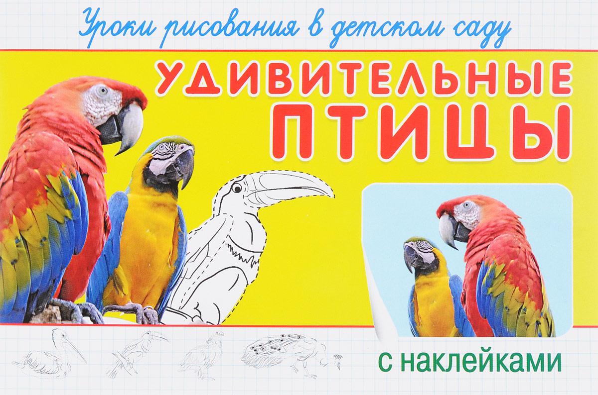 Удивительные птицы. Уроки рисования в детском саду (+ наклейки)
