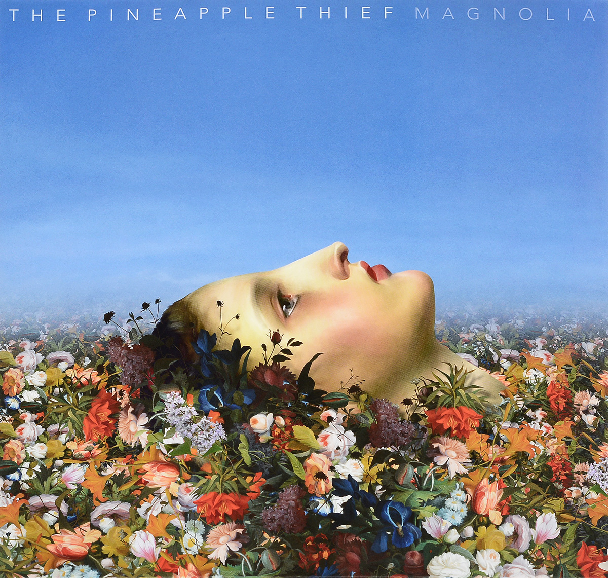 The Pineapple Thief The Pineapple Thief. Magnolia (2 LP) the good thief