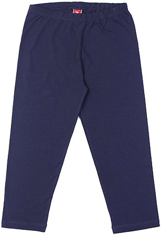 Леггинсы для девочки Cherubino, цвет: синий. CAJ 7439. Размер 128 спортивный костюм для девочки cherubino цвет фиолетовый темно серый caj 9654 размер 128