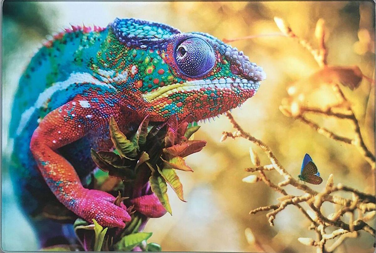 Доска разделочная GiftnHome Краски природы, 20 х 30 смCB- ColorsДоска для нарезки из жаропрочного стекла не боится посудомоечной машины и может служить подставкой под горячее в повседневном использовании. Модные дизайнерские принты - сделают вашу кухню стильной и современной. Возможно использование в качестве декоративного аксессуара для интерьера.