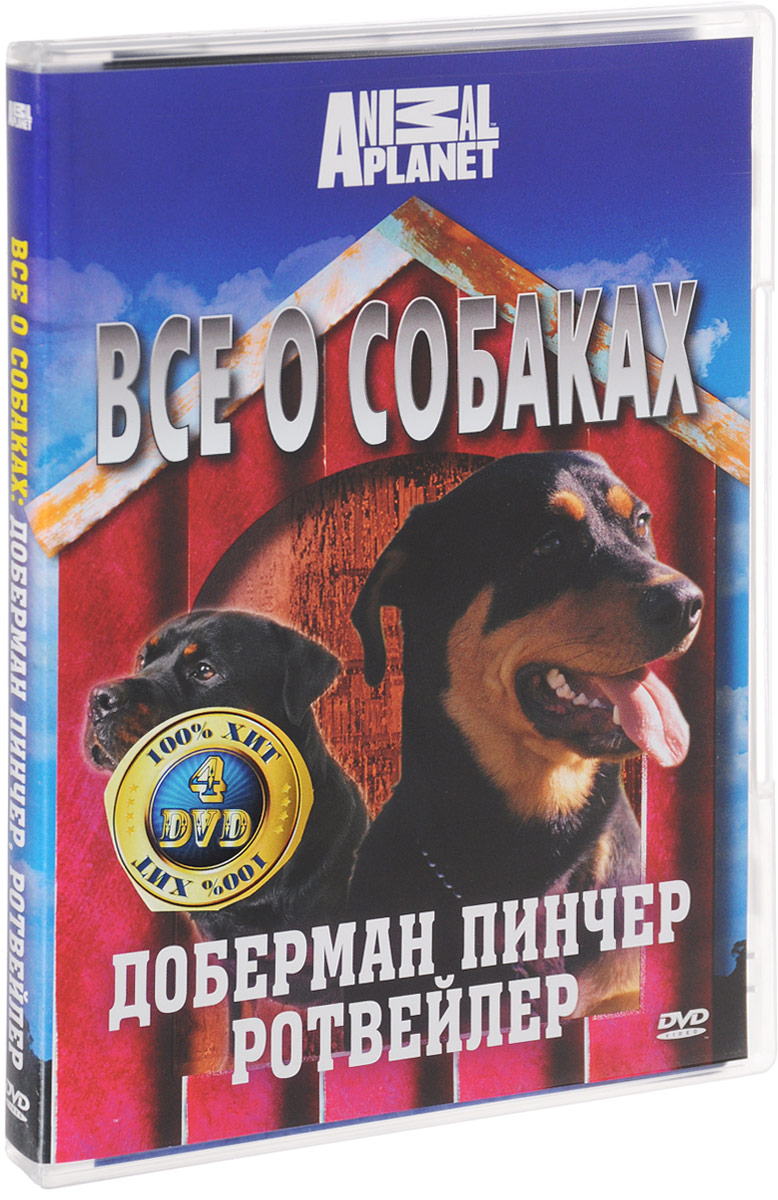 Discovery: Все о собаках. Часть 1 (4 DVD) толстовка wearcraft premium унисекс printio nancy and freddy