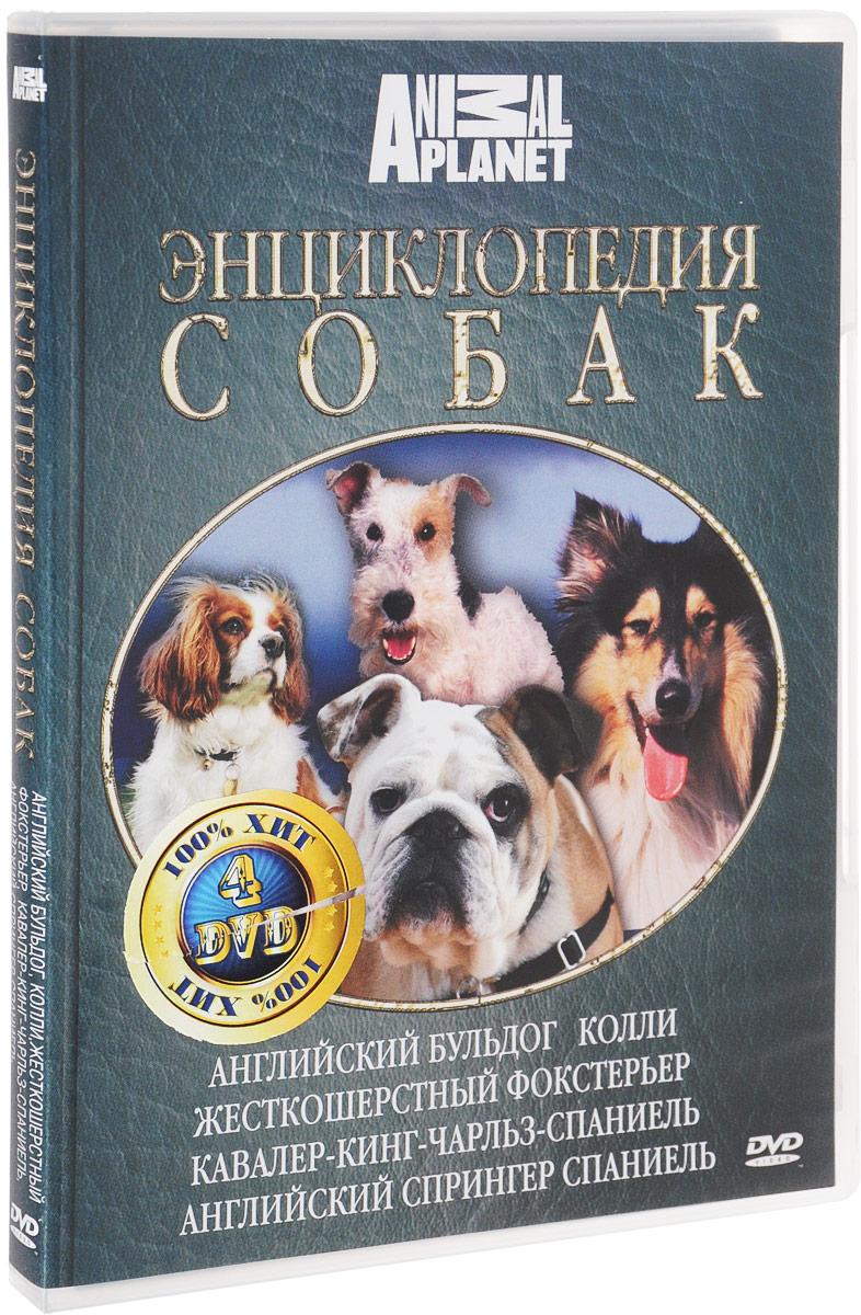 Discovery: Все о собаках. Часть 2 (4 DVD) комедии 4 dvd