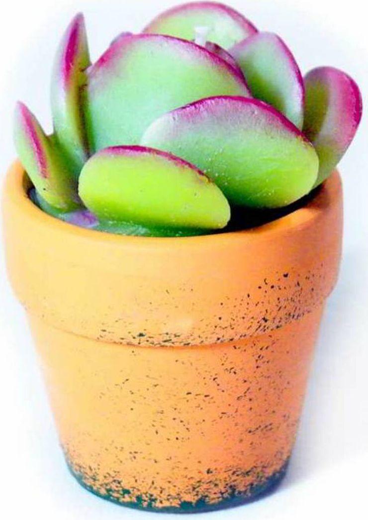 Свеча декоративная Карамба Кактус в горшке, цвет: зеленый, 8 см3109Свеча для праздника и украшения интерьера.