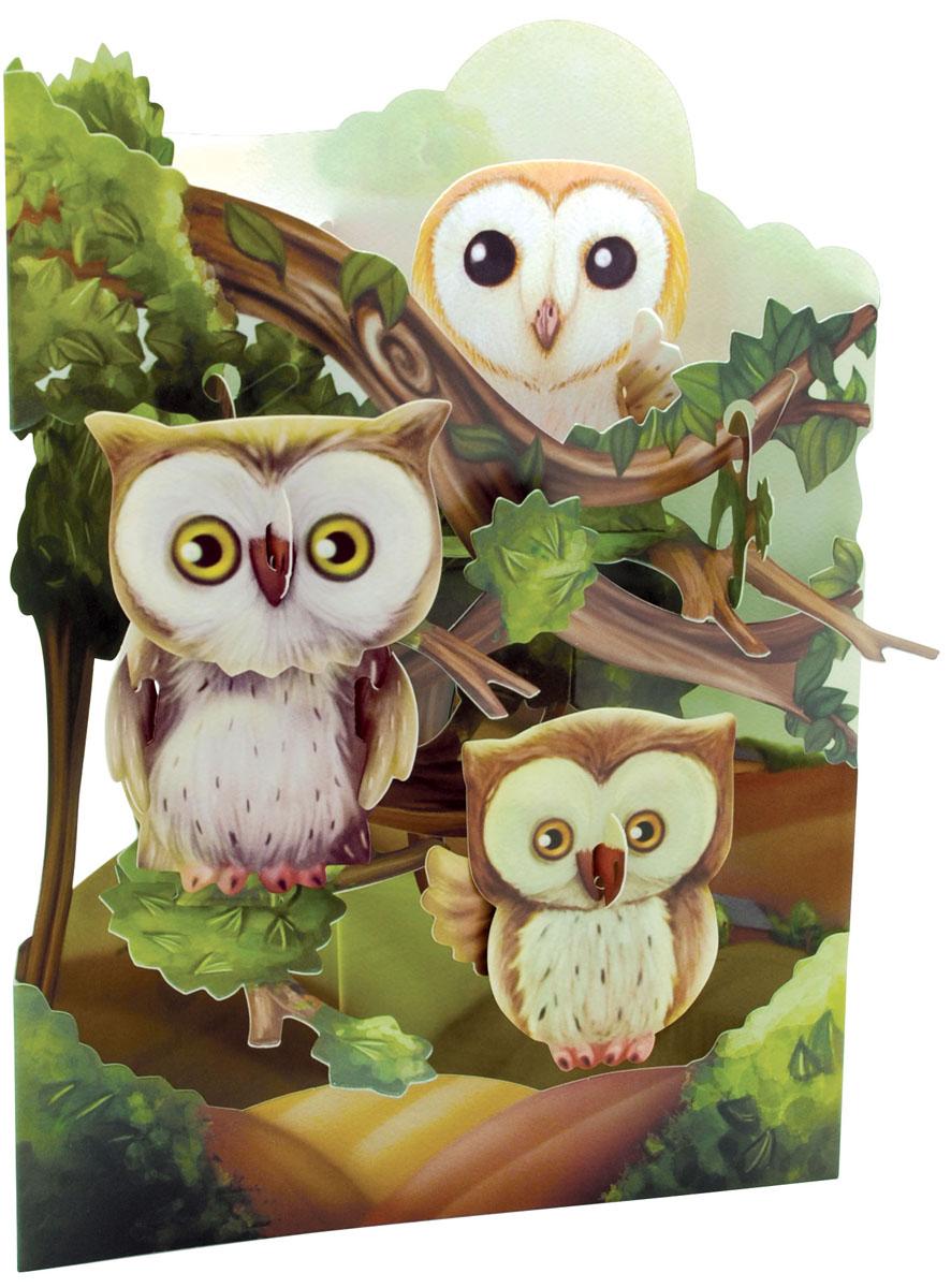 Объемная открытка Santoro СовыSC 168Коллекция объемных английских 3Д открыток