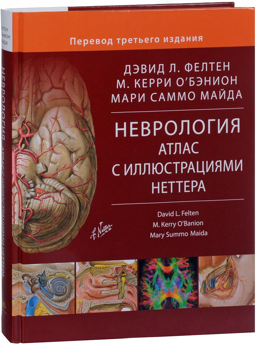 Неврология. Атлас с иллюстрациями Неттера