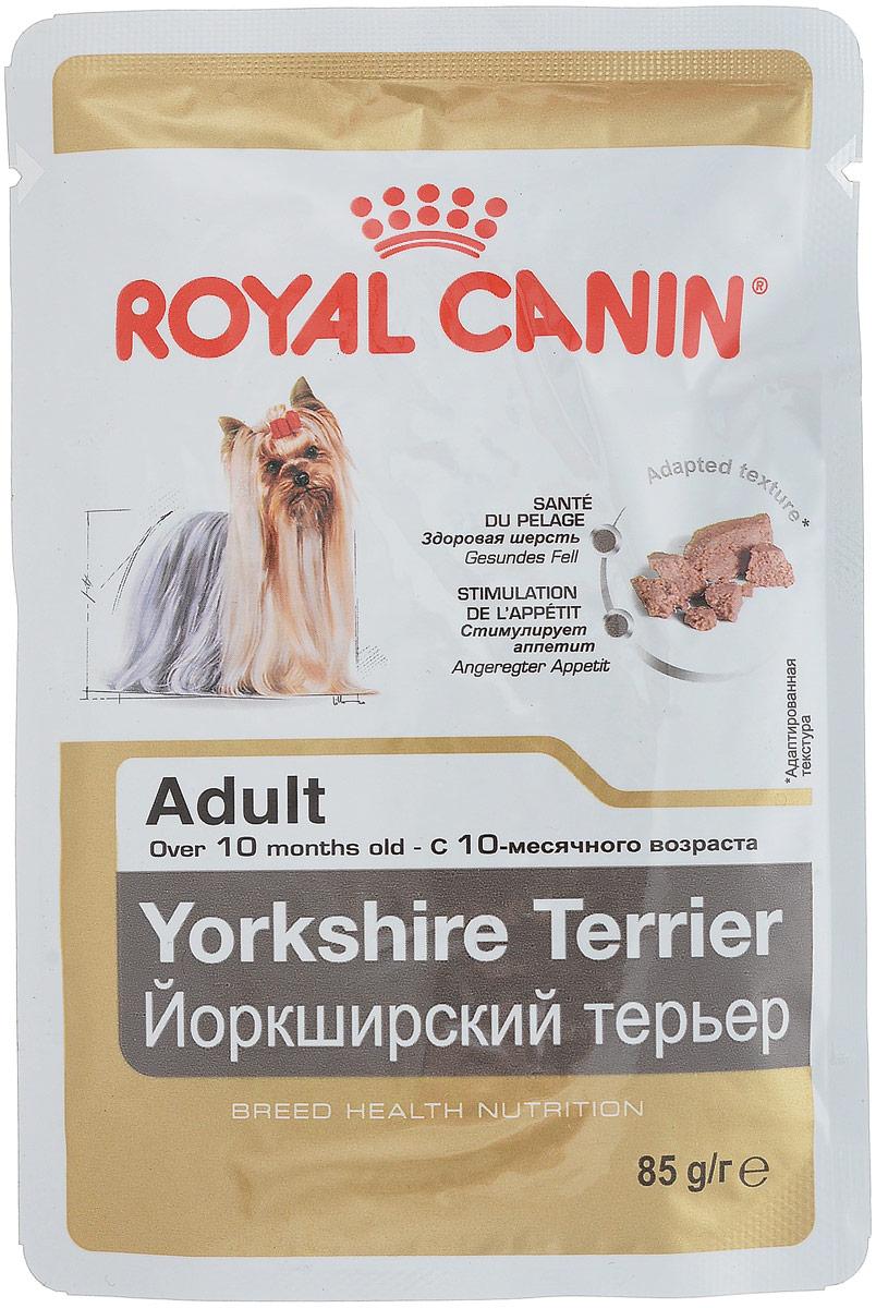 Консервы Royal Canin Yorkshire Terrier Adult, для собак породы йоркширский терьер в возрасте старше 10 месяцев, паштет, 85 г8011Консервы Royal Canin Poodle Adult специально созданы для собак породы йоркширский терьер в возрасте старше10 месяцев.Йоркширский терьер - это сказочное создание, которое очаровывает с первой минуты знакомства с ним.Тоненькие, хрупкие и изящные йорки в силу своей физиологии нуждаются в максимальном поступлении ворганизм аминокислот, необходимых для развития шерсти и ее быстрого роста. Здоровая шерсть. Эта эксклюзивная формула поддерживает здоровье и красоту шерсти йоркширского терьера. Вкусовая привлекательность. Благодаря высокой вкусовой привлекательности корм способен удовлетворитьпотребности даже самых привередливых собак. Особый комплекс с питательными веществами помогает сохранить здоровье собаки в зрелом возрасте испособствует долголетию. Состав: мясо и мясные субпродукты, злаки, субпродукты растительного происхождения, масла и жиры,минеральные вещества, углеводы.Добавки (в 1 кг): Витамин D3: 189 ME, Железо: 27 мг, Йод: 0,15 мг, Марганец: 8,4 мг, Цинк: 84 мг.. Товар сертифицирован.