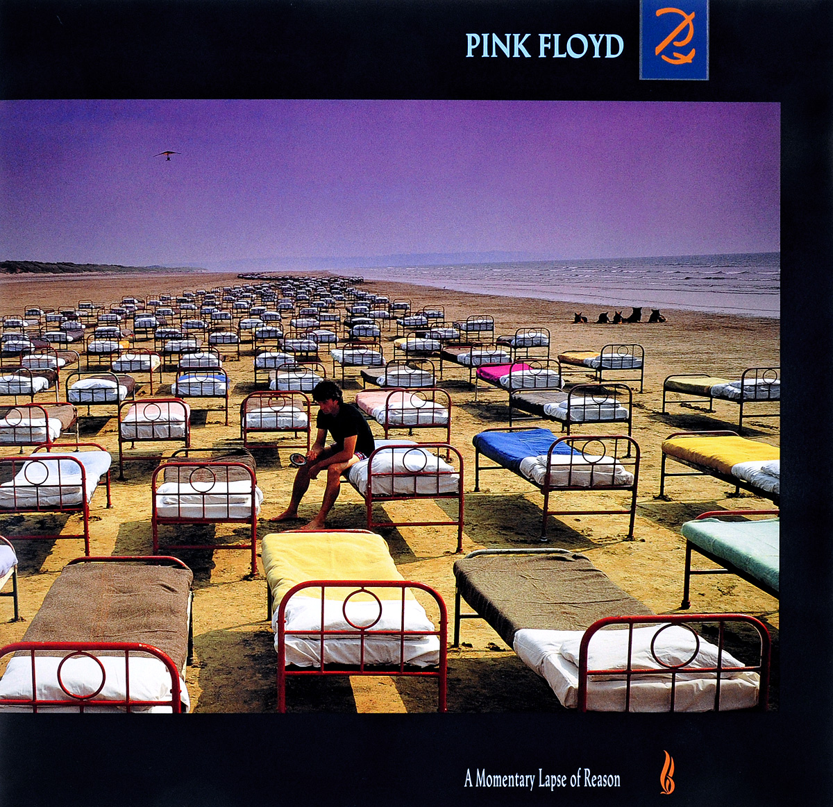 Pink Floyd Pink Floyd. A Momentary Lapse Of Reason (LP) pink floyd pink floyd x posed the interview