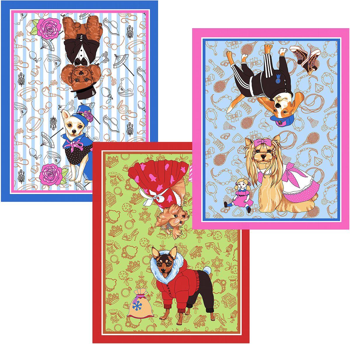 Набор кухонных полотенец Мультидом Собака-модница, цвет: синий, красный, розовый, 48 х 62 см, 3 шт полотенца кухонные la pastel комплект кухонных полотенец gabel 6пр 50x70 primizie