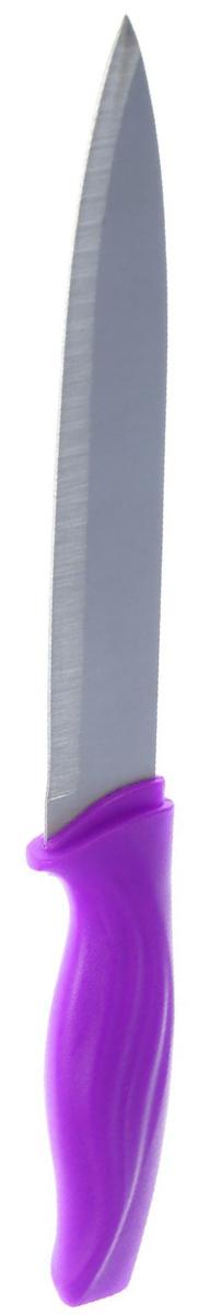 Нож универсальный Доляна Оберон, цвет: фиолетовый, длина лезвия 12,5 см. 17023481702348_фиолетовыйУниверсальный нож Доляна Оберон идеален для ежедневной нарезки любых продуктов. Лезвие изготовлено из металла, который не подвергается коррозии, а ручка удобной формы выполнена из пластика. Нож не впитывает запахи, оставляя натуральный вкус продуктов, отличается прочностью и долговечностью. Лезвие и ручка отлично сбалансированы, что позволяет резать быстрее и комфортнее.