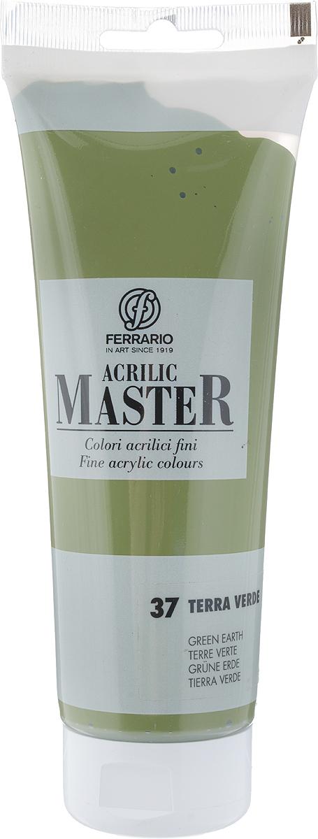 Ferrario Краска акриловая Acrilic Master цвет №37 зеленый земляной BM0978B0037BM0978B0037Акриловые краски серии ACRILIC MASTER итальянской компании Ferrario. Универсальны в применении, так как хорошо ложатся на любую обезжиренную поверхность: бумага, холст, картон, дерево, керамика, пластик. При изготовлении красок используются высококачественные пигменты мелкого помола. Краска быстро сохнет, обладает отличной укрывистостью и насыщенностью цвета. Работы, сделанные с помощью ACRILIC MASTER, не тускнеют и не выгорают на солнце. Все цвета отлично смешиваются между собой и при необходимости разбавляются водой. Для достижения необходимых эффектов применяют различные медиумы для акриловой живописи. В серии представлено 50 цветов.