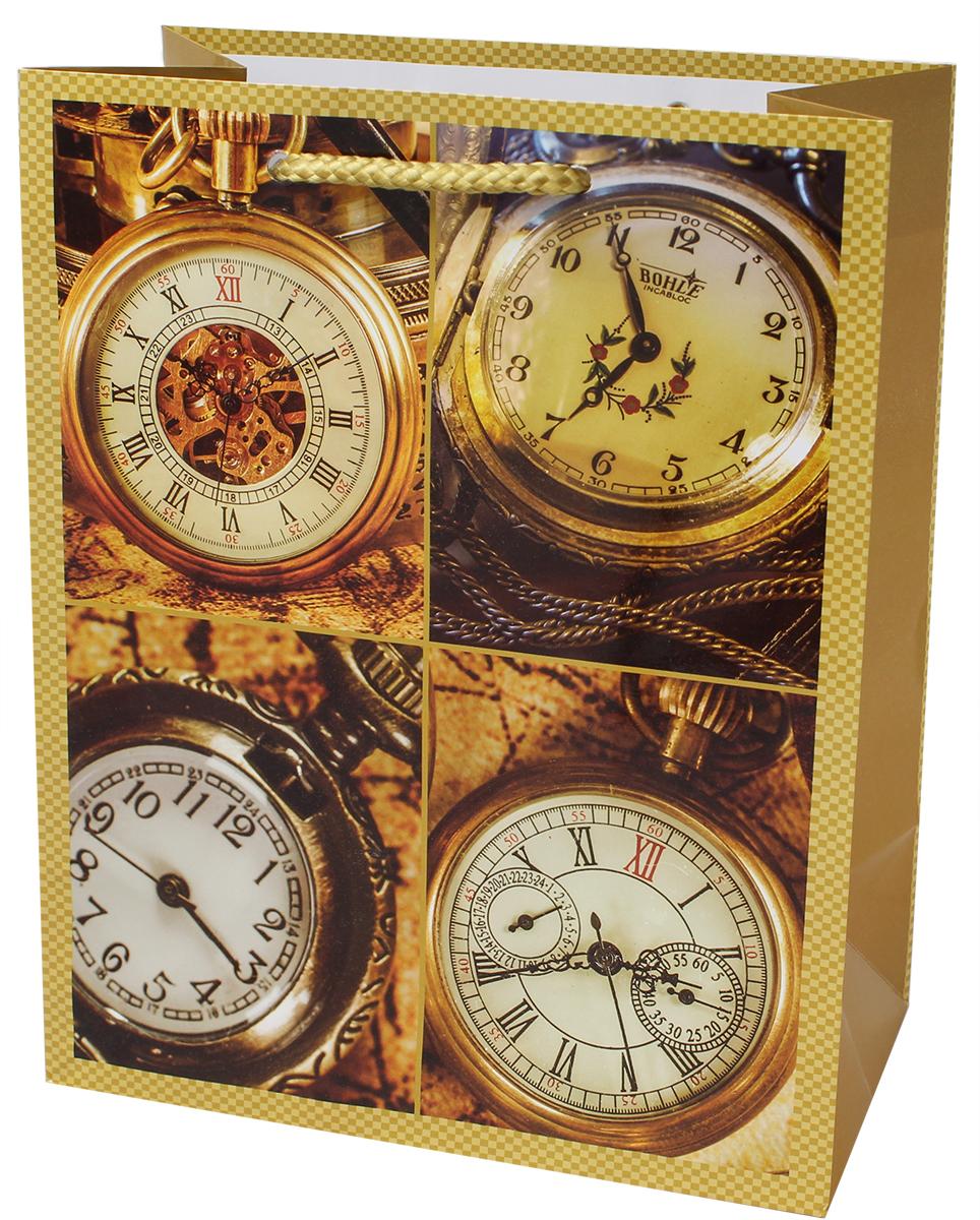 Пакет подарочный Мегамаг, ламинированный, 18 х 22,7 х 10 см. 2204 M2204 MПакет подарочный ламинированный. Ручки-шнурки.Размер:180 x 227 x 100 мм .