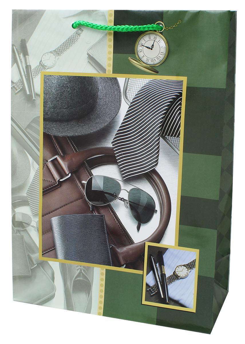 Пакет подарочный ламинированный. Ручки-шнурки. Размер:220 x 310 x 100 мм .
