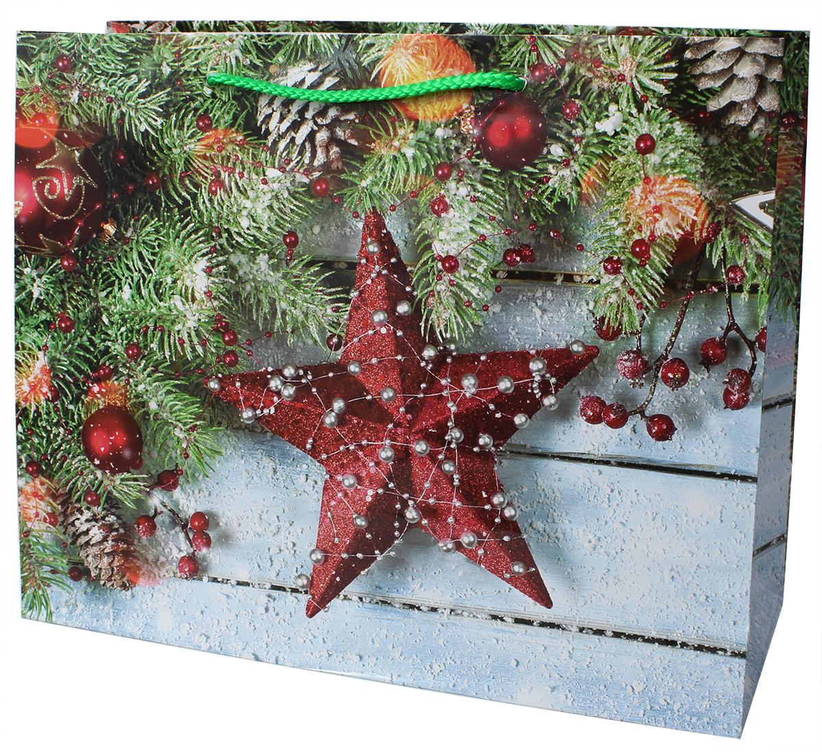 Пакет подарочный ламинированный. Ручки-шнурки. Размер:327 x 264 x 136 мм .
