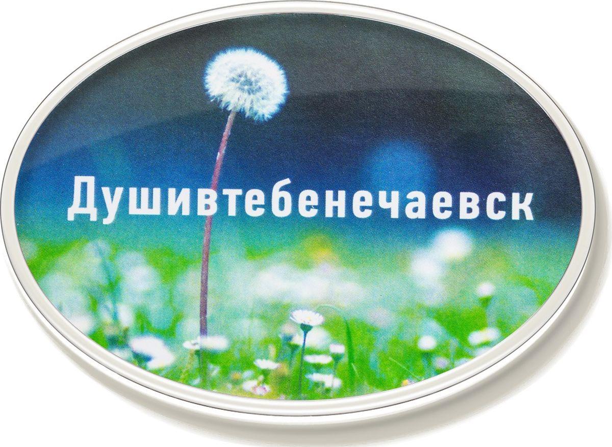 Магнит Бюро находок Душивтебенечаевск, цвет: зеленый магнит бюро находок ятебялюблюмск цвет светло коричневый