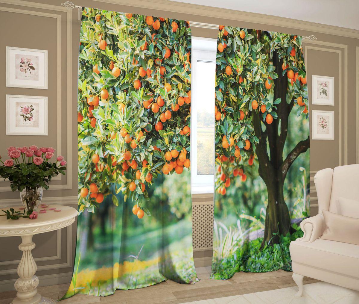 Комплект фотоштор Zlata Korunka Апельсиновое дерево, на ленте, цвет: зеленый, оранжевый, высота 267 см. 21479ФШГБ001-09213ФотошторыZlata Korunka Апельсиновое дерево из ткани - сатен - это новация в мире фотоштор. Ткань - сатен имеет сдержанный благородный отблеск и не создает бликов, обладает такими свойствами как: прочность, эластичность и одновременно способность сохранять заданную форму, способность красиво драпироваться, хорошие светорассеивающие и звукоизолирующие свойства. Сатен очень прост в уходе. Он хорошо переносит машинную стирку при 30 градусах, и не нуждается в глажке. Такая портьерная ткань, как сатен, наряду с габардином и блэкаутом, составляет тройку материалов, которые лучше всего защищают от светового излучения. Особую популярность сатеновый материал приобрел в связи с тем, что он является одной из лучших основ для фотопечати.Рисунки на белом гладком полотне, с использованием гипоаллергенных чернил, получаются очень яркими и четкими, они не выгорают и хорошо переносят стирку.Такие шторы с фотографически точным изображением позволяют создать необычный интерьер самого разнообразного стиля.