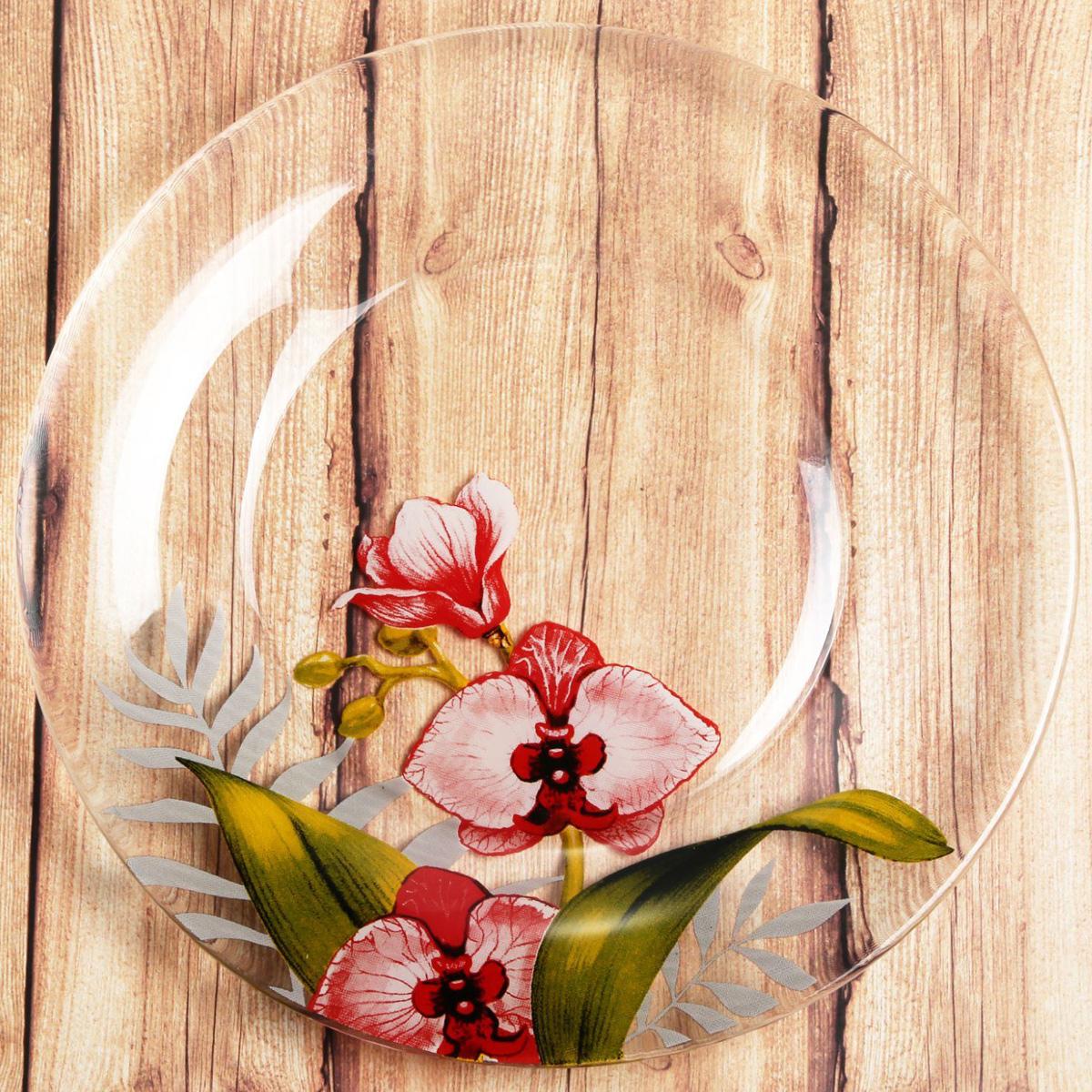 Тарелка Sima-land Орхидеи, диаметр 20 см2196445Красивая тарелка с рисунком дополнит праздничный стол, ведь прозрачное стекло выглядит элегантно и стильно. Тарелку можно использовать в микроволновой печи и мыть в посудомоечной машине. При бережном обращении изделие будет радовать вас безукоризненным внешним видом долгие годы.