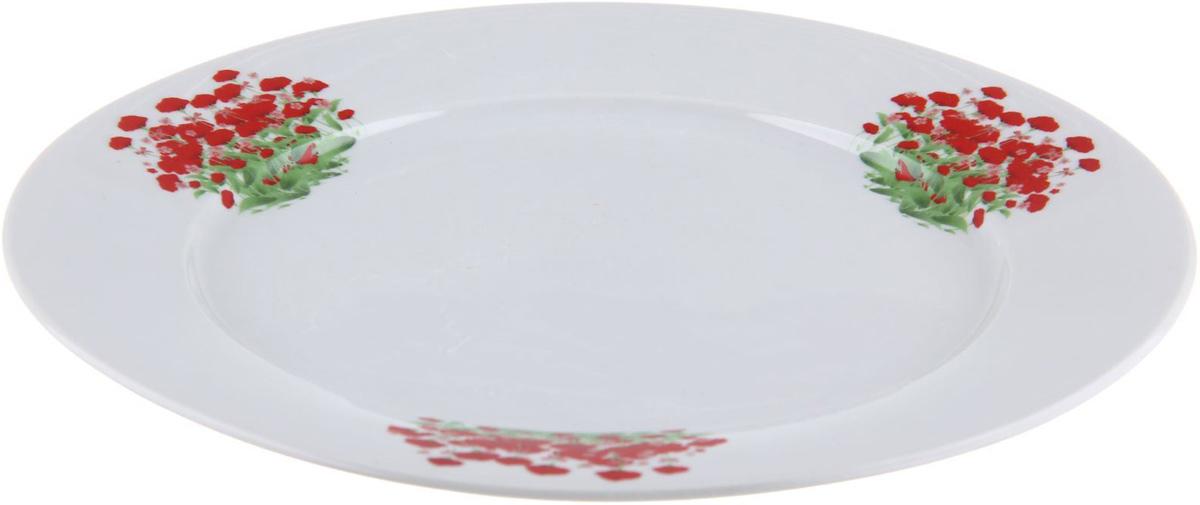 Тарелка мелкая Фарфор Вербилок Альпийский луг, диаметр 24 см. 12627881262788От качества посуды зависит не только вкус еды, но и здоровье человека. Тарелка - товар, соответствующий российским стандартам качества. Любой хозяйке будет приятно держать его в руках. С такой посудой и кухонной утварью приготовление еды и сервировка стола превратятся в настоящий праздник.