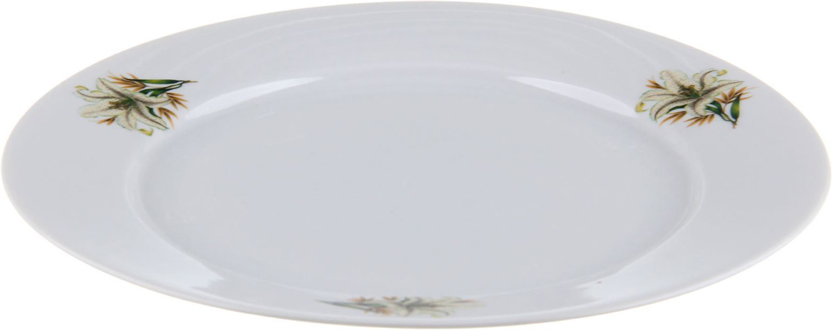 Тарелка мелкая Фарфор Вербилок Белая лилия, диаметр 24 см. 10168351016835От качества посуды зависит не только вкус еды, но и здоровье человека. Тарелка - товар, соответствующий российским стандартам качества. Любой хозяйке будет приятно держать его в руках. С такой посудой и кухонной утварью приготовление еды и сервировка стола превратятся в настоящий праздник.