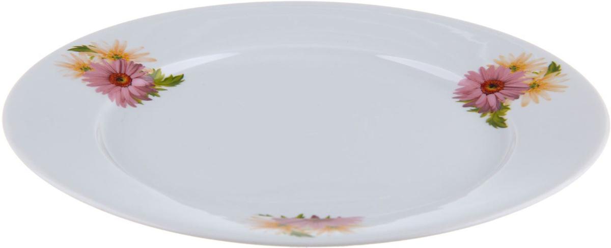 Тарелка мелкая Фарфор Вербилок Розовые герберы, диаметр 24 см. 12628041262804От качества посуды зависит не только вкус еды, но и здоровье человека. Тарелка - товар, соответствующий российским стандартам качества. Любой хозяйке будет приятно держать его в руках. С такой посудой и кухонной утварью приготовление еды и сервировка стола превратятся в настоящий праздник.