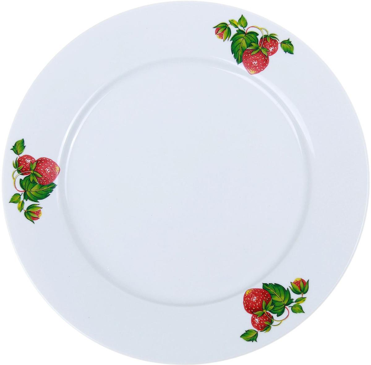 Тарелка мелкая Фарфор Вербилок Цветущая земляника, диаметр 24 см. 10168401016840От качества посуды зависит не только вкус еды, но и здоровье человека. Тарелка - товар, соответствующий российским стандартам качества. Любой хозяйке будет приятно держать его в руках. С такой посудой и кухонной утварью приготовление еды и сервировка стола превратятся в настоящий праздник.