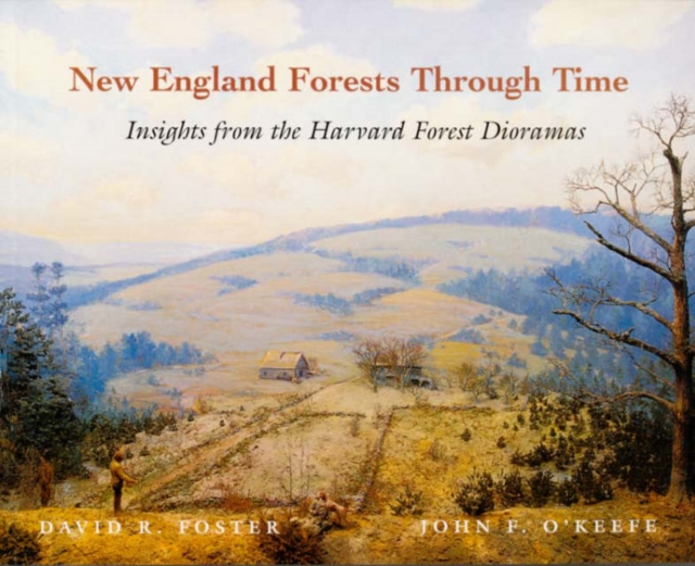 New England Forests Through Time – Insights From the Harvard Forest Dioramas