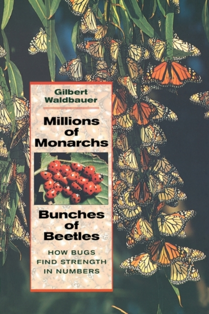 Millions of Monarchs, Bunches of Beetles – How Bugs Find Strength in Numbers steven goldberg h billions of drops in millions of buckets why philanthropy doesn t advance social progress