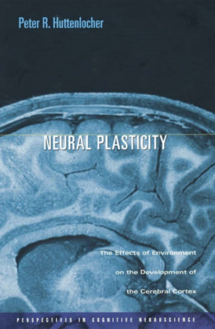 купить Neural Plasticity – The Effects of Environment on the Development of the Cerebral Cortex недорого