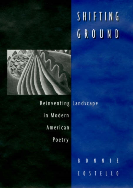 Shifting Ground – Reinventing Landscape in Modern American Poetry self and sensibility in contemporary american poetry