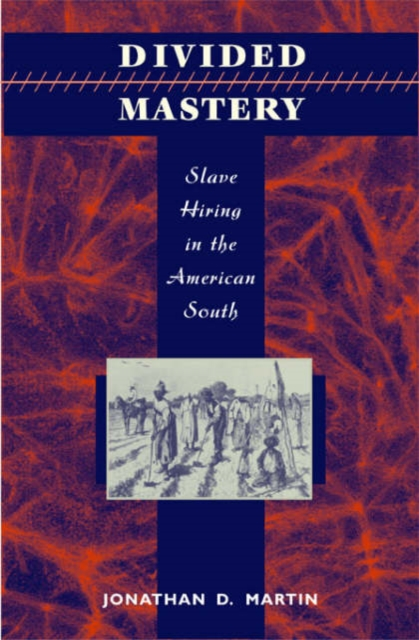 Divided Mastery – Slave Hiring in the American South slave rebellion in brazil