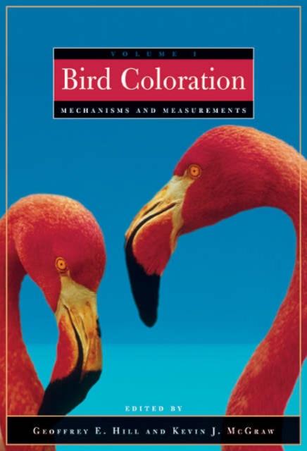 Bird Coloration – Mechanism and Measurements V 1 focal bird pack 5 1 super bird