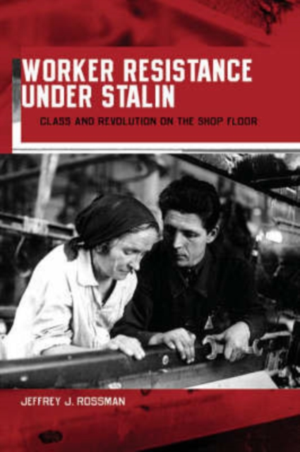 Worker Resistance Under Stalin – Class and Revolution on the Shop Floor revolution on my mind – writing a diary under stalin