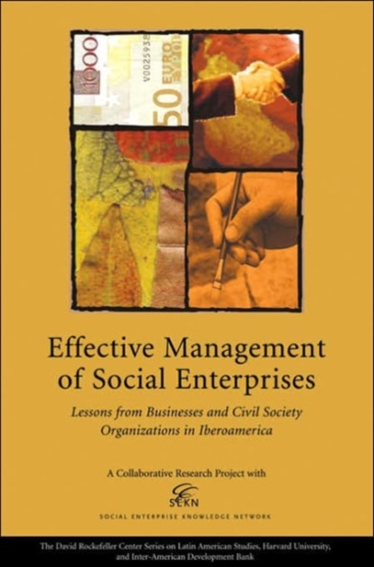 Effective Management of Social Enterprise – Lessons from Business and Civil Society Organizations in Iberoamerica sim segal corporate value of enterprise risk management the next step in business management