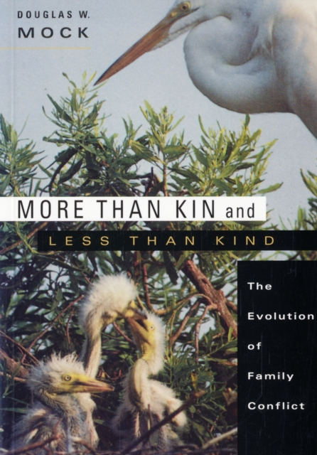 More Than Kin and Less Than Kind – The Evolution of Family Conflict family friendly policies and work family conflict