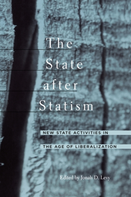 The State after Statism – New State Activities in the Age of Liberalization nomadic state of mind® вьетнамки