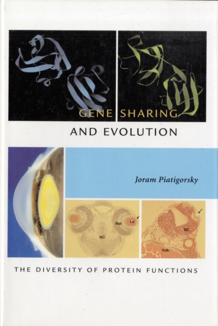 Gene Sharing and Evolution – The Diversity of Protein Functions the evolution of color vision