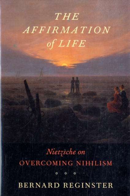 The Affirmation of Life – Nietzsche on Overcoming Nihilism overcoming law