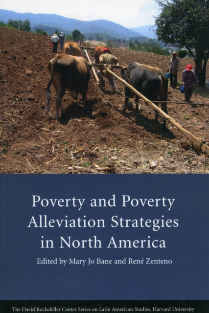 Poverty and Poverty Alleviation Strategies in North America role of ict in rural poverty alleviation
