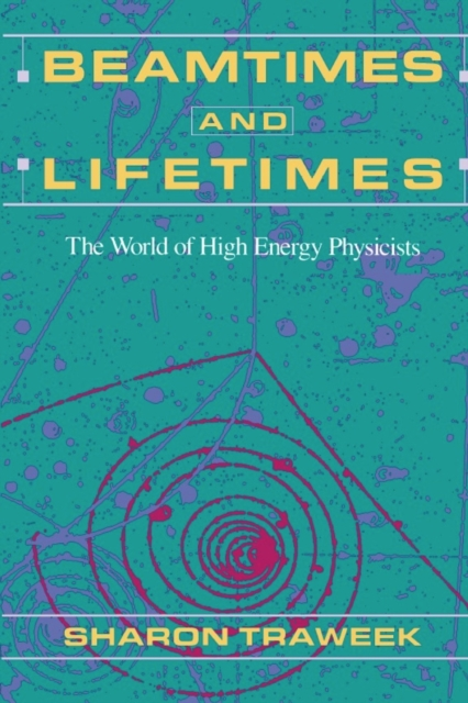 Beamtimes & Lifetimes – The World of High Energy Physicists (Paper) lacalle daniel the energy world is flat