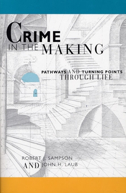Crime in the Making – Pathways & Turning Points through Life (Paper) considering environmental war crime