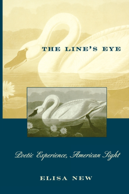 The Line?s Eye – Poetic Experience, American Sight (Paper) the golem s eye