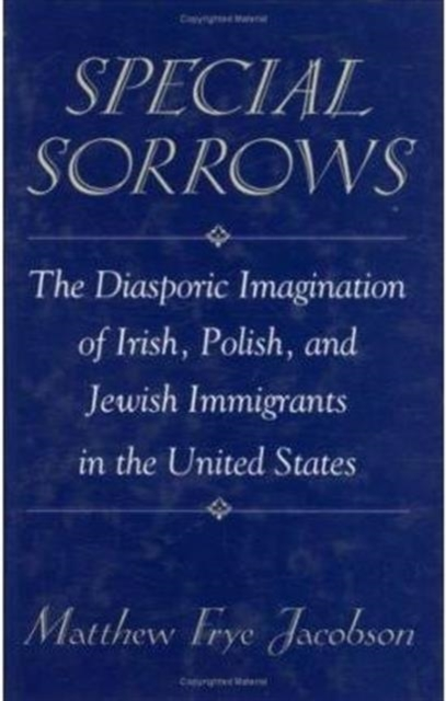 Special Sorrows – The Diasporic Imagination of Irish, Polish & Jewish Immigrants in the United States all my puny sorrows