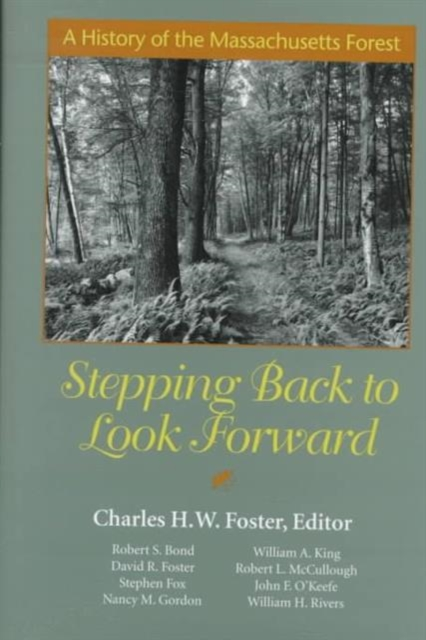 Stepping Back to Look Forward – A History of the Massachusetts Forest samuel richardson clarissa or the history of a young lady vol 8